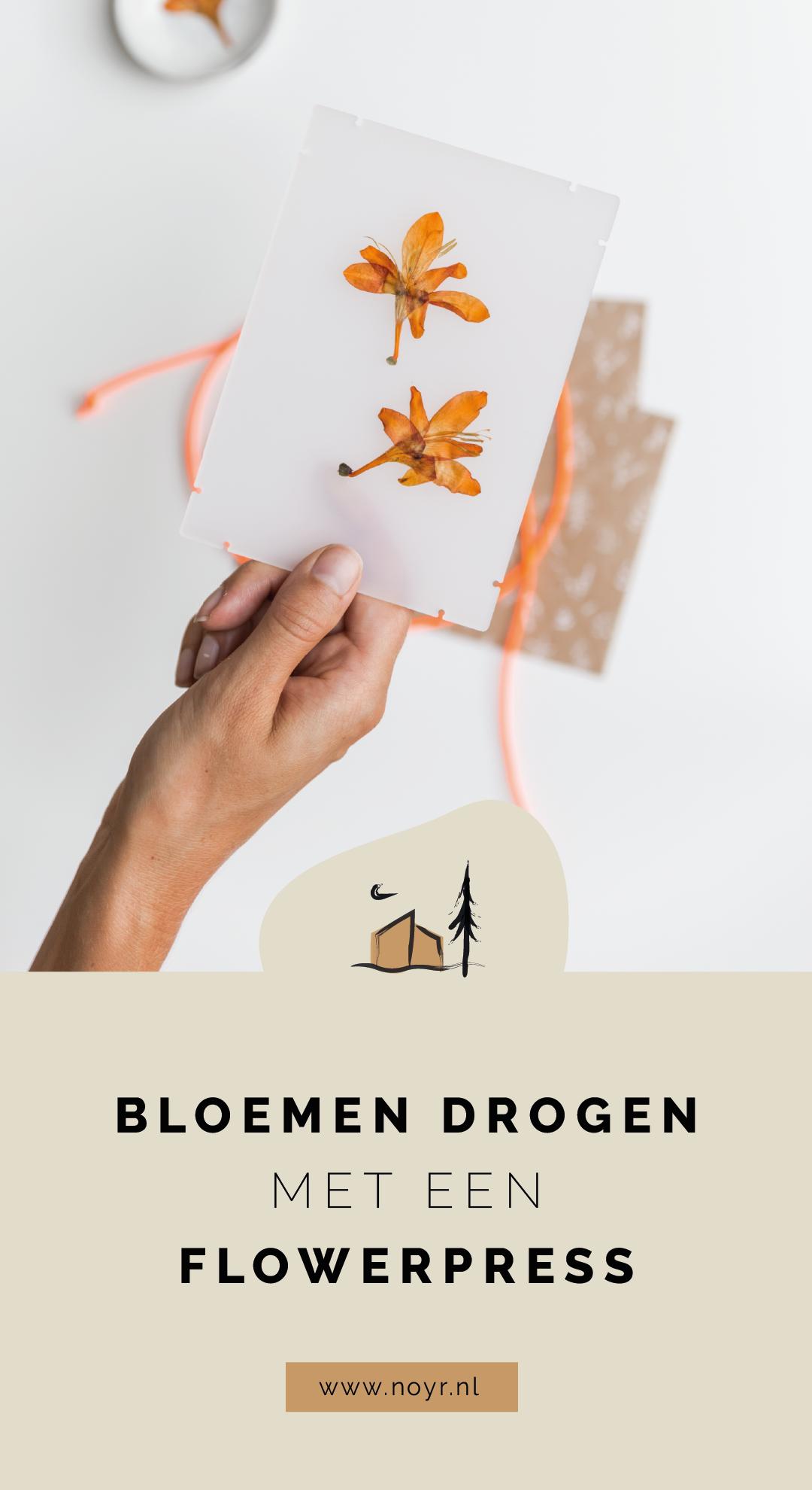 Bloemen drogen met een flowerpress | DIY | Knutselen op vakantie | Pinterest