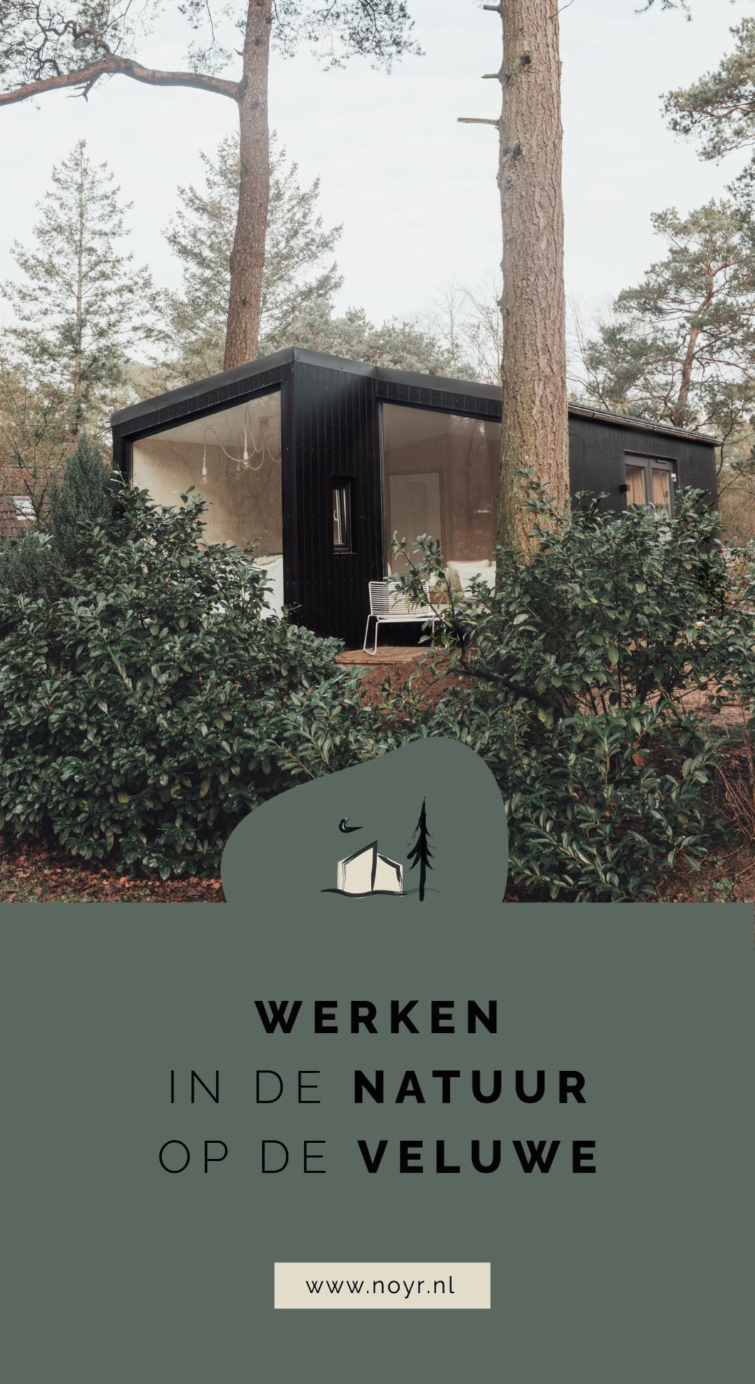 Werken in de natuur op de Veluwe - tiny house - workation Nederland