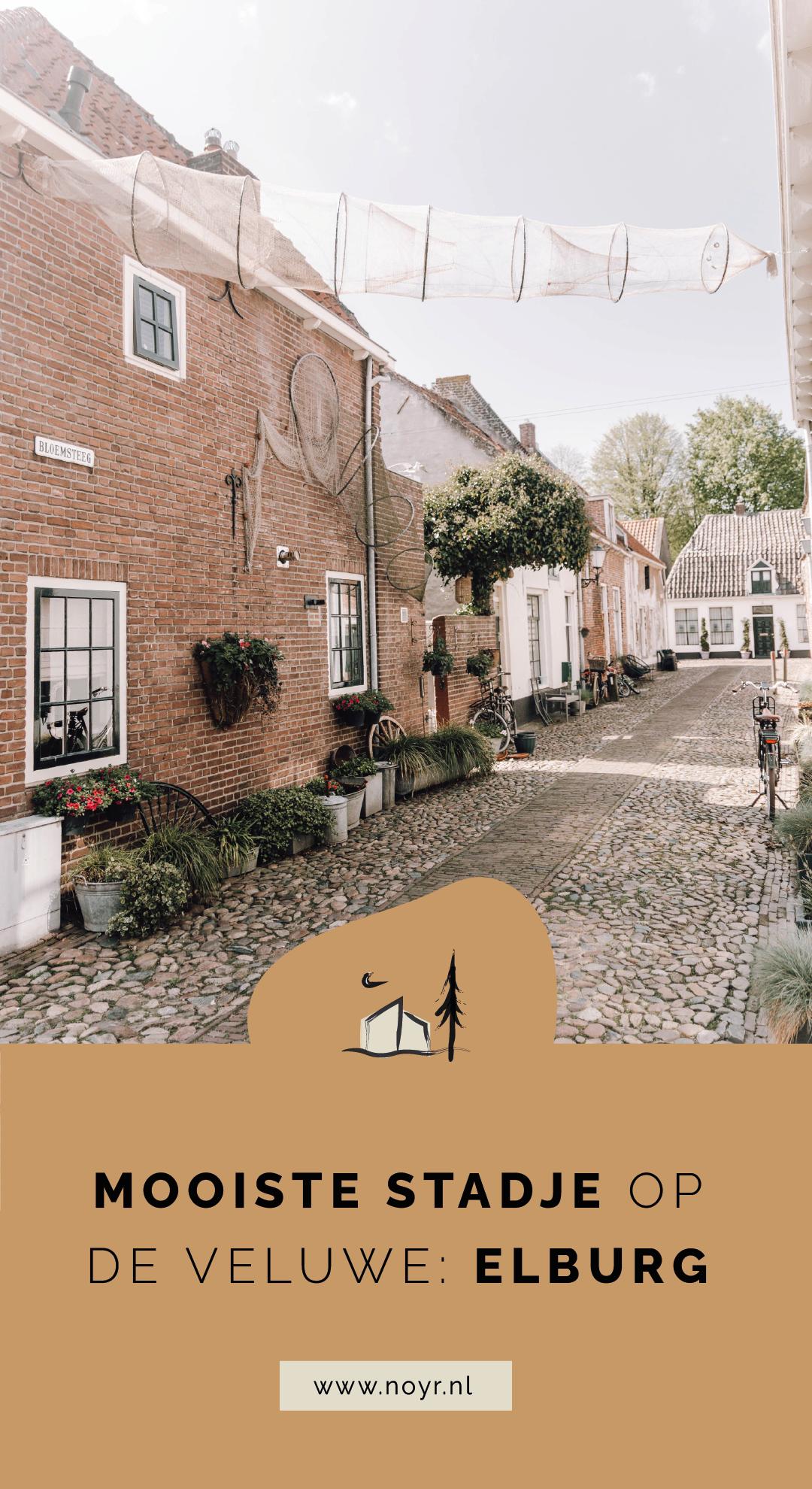 Hotspots Elburg | NOYR tiny house
