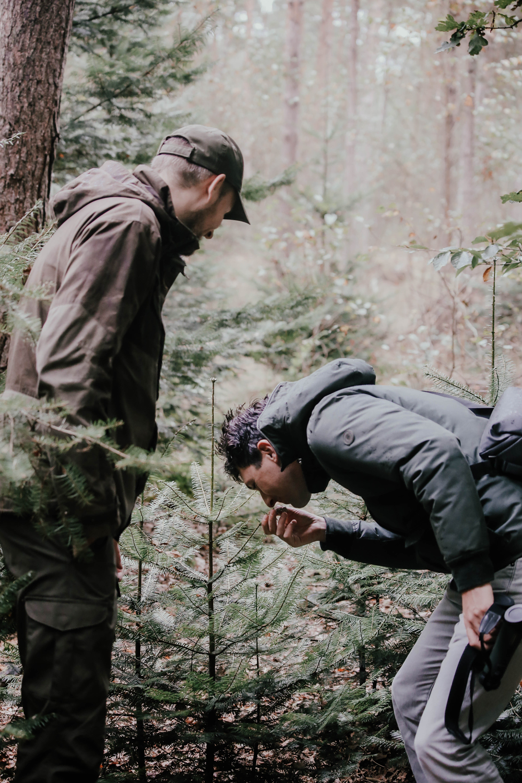 Douglas thee | Wildwandeling | Wildpraat